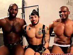 Restrained ebon hunks cock sucked in trio