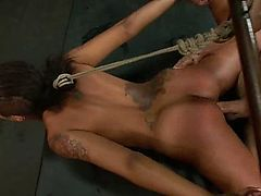 Skin Diamond's hot BDSM fuck